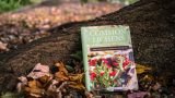 Photo of Common Lichens book