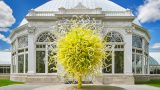 Photo of Chihuly