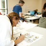 Photo of landscape design students at work.