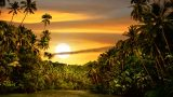 Photo of a tropical sunset