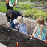 Photo of children participating in Dig Plant Grow activities, ECAG