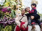 Father, daughter, and child smiling at the orchid show