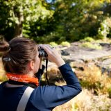 A visitor scouting for birds with binoculars.
