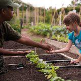 ECAG, Children, Planting