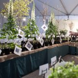 A photo of the AGFF Plant Sale & Programs