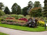 Home Gardening Center - Fall