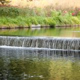 Native Plant Garden Waterfall