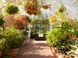 Conservatory - Fall