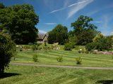 Lilac garden view