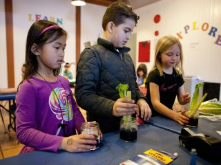 Photo of kids in the discovery center