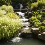 Photo of NYBG's Rock Garden cascade