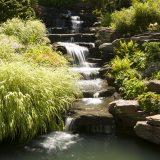 Photo of NYBG's Rock Garden cascade