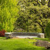 Outlook over the Azalea Garden with green leaves