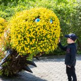A child in the Adventure Garden with a caterpillar made from flowers.