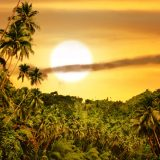 Photo of tropical sunset