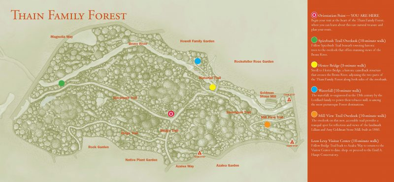 Map of the Thain Family Forest