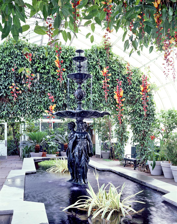 General Nybg Images New York Botanical Garden
