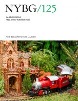 Cover of Garden News Fall Winter 2015-16