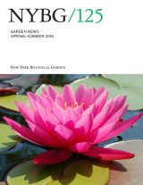 Cover of Garden News Spring Summer 2016