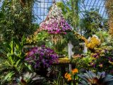 Photo of the Orchid Show's Thai-inspired pavilion