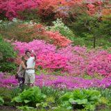 A couple in the Azalea Garden.