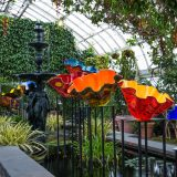 Dale Chihuly's Macchia Forest in the Aquatic Plants Gallery.