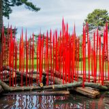 Dale Chihuly's Red Reeds on Logs in the Reflecting Pool.