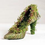 Photo of a botanical shoe