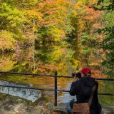Photo of a man taking a picture of a waterfall and a forest in the fall