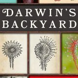 Images of Sundew plants with a sign that says