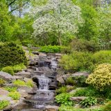 Image of a water feature in the Rock Garden