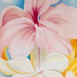 Hibiscus-with-Plumeria