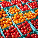 Boxes of yellow and red tomatoes.
