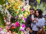 A couple at The Orchid Show taking a photo.
