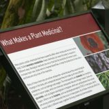 An informational sign entitled