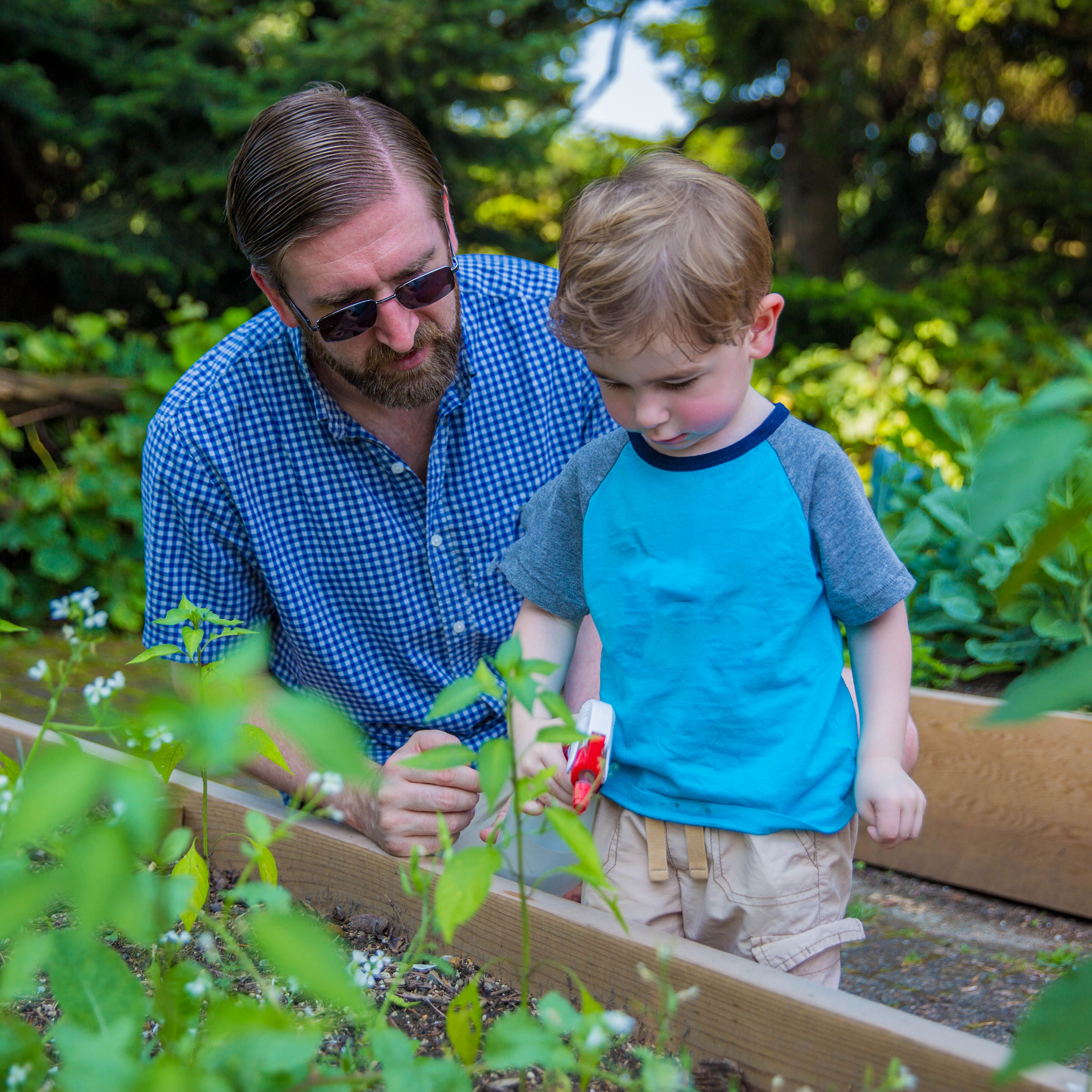 A child and his father spraying garden beds with water