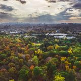 Aerial view of NYBG and NYC