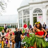 hula dancers at the Conservatory
