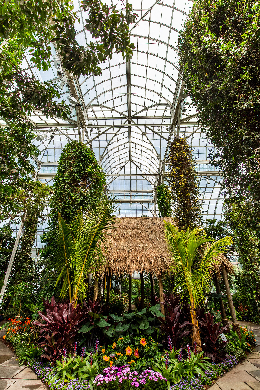 Georgia O 39 Keeffe Visions Of Hawai I Press Room Image Gallery New York Botanical Garden