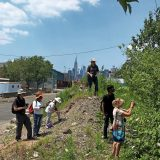 EcoFlora volunteers look for plants in a NYC lot.