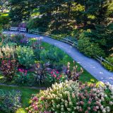 Aerial view of a walkway next to trees and colorful flowers