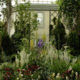 Image of Darwin's garden in the Conservatory