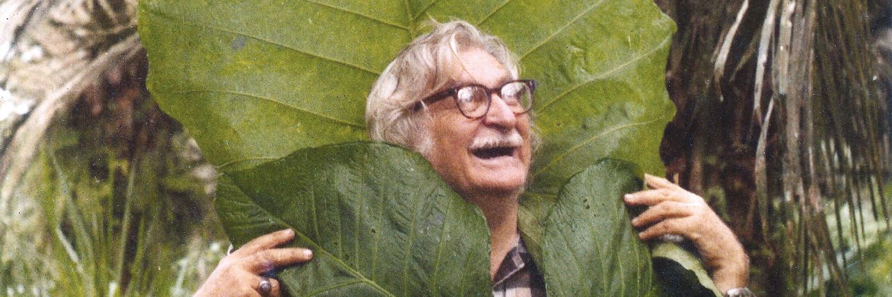 Brazilian Modern: The Living Art of Roberto Burle Marx