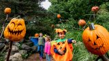 Photo of a boy in a pumpkin costume pointing at a scarecrow pumpkin in the Spooky Pumpkin Garden