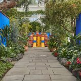 Image of Frida Kahlo exhibition in the Conservatory