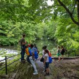 Kids standing by the Bronx River in the Thain Family Forest