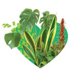 Photo of #plantlove logo