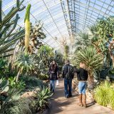 People walking through the Conservatory.