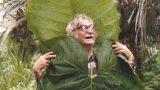 A photo of Roberto Burle Marx holding up elephant ear leaves.