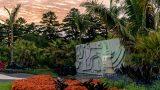 A twilit sculptural water feature in Brazilian Modern.